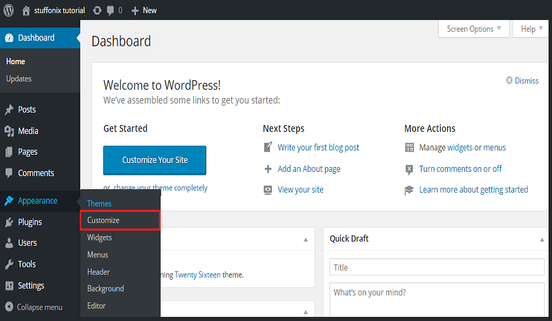 wordpress customize option