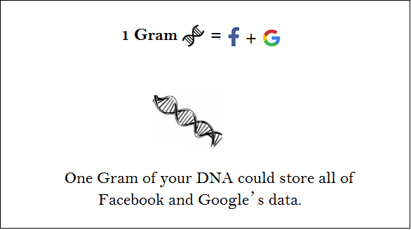facebook data in dna