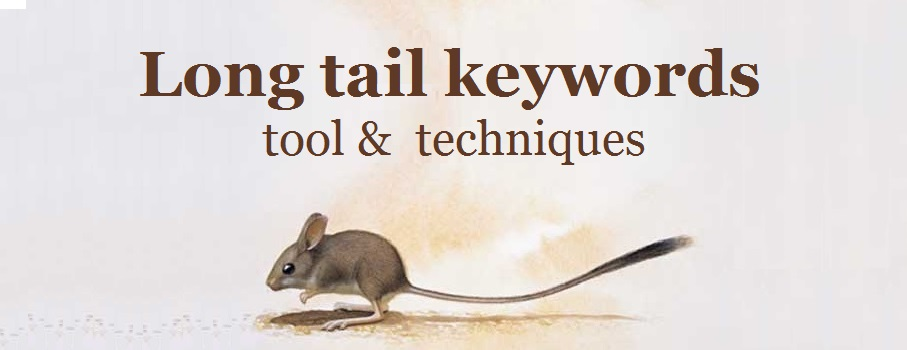 How to search for long tail keywords - tool &  techniques