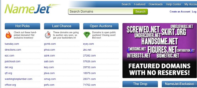 namejet selling expired domainname