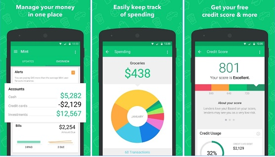 Mint app to earn money for college student