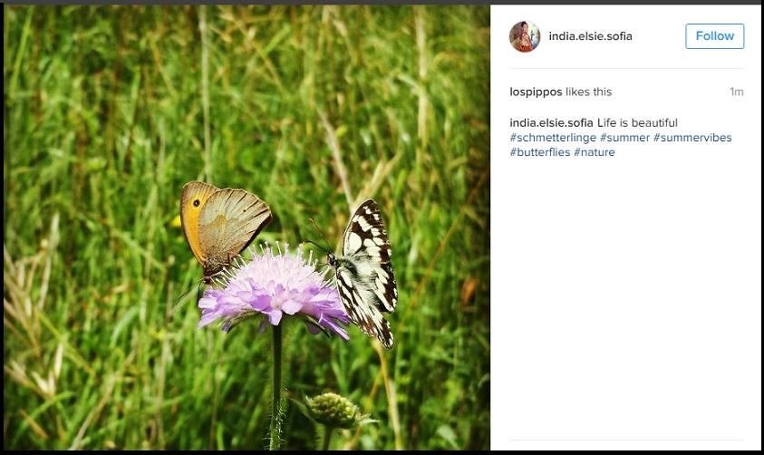 summer instagram top hashtag